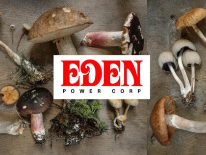 Introducing: EDEN Power Corp