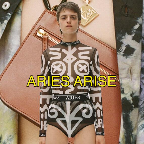 ARIES ARISE BANNER