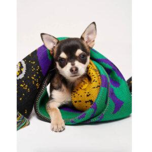 P.A.M. (Perks & Mini) Bufanda Good Life Knit - Photosynthesis